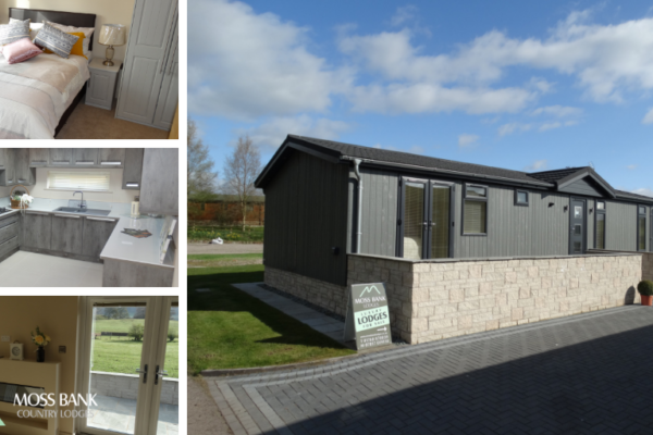 Luxury holiday home lodges at Moss Bank